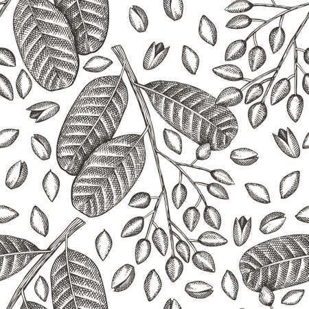 Hand drawn pistachio branch and kernels seamless pattern. Organic food illustration on white background. Vintage nut illustration. Engraved style botanical background.