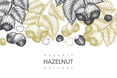 Hand drawn sketch hazelnut design template. Organic food vector illustration on white background. Vintage nut illustration. Engraved style botanical background. 向量圖像