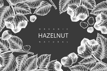 Hand drawn sketch hazelnut design template. Organic food vector illustration on chalk board. Vintage nut illustration. Engraved style botanical background.