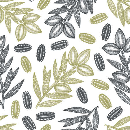 Hand drawn pecan branch and kernels seamless pattern. Organic food vector illustration on white background. Vintage nut illustration. Engraved style botanical picture. Vettoriali