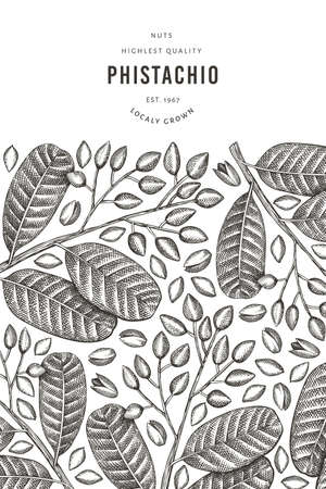 Hand drawn phistachio branch and kernels design template. Organic food vector illustration on white background. Retro nut illustration. Engraved style botanical banner. 일러스트