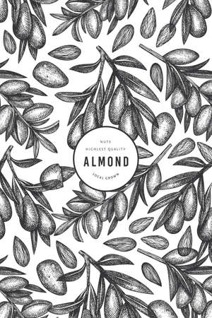 Hand drawn sketch almond design template. Organic food vector illustration. Retro nut illustration. Engraved style botanical background.  イラスト・ベクター素材