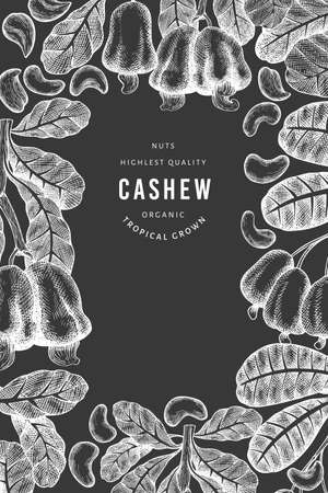 Hand drawn sketch cashew design template. Organic food vector illustration on chalk board. Vintage nut illustration. Engraved style botanical background.