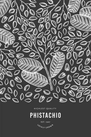 Hand drawn phistachio branch and kernels design template. Organic food vector illustration on chalk board. Retro nut illustration. Engraved style botanical banner.