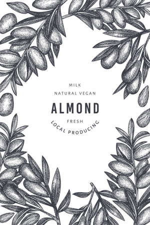Hand drawn sketch almond design template. Organic food vector illustration. Retro nut illustration. Engraved style botanical background. 矢量图像