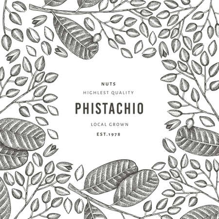 Hand drawn phistachio branch and kernels design template. Organic food vector illustration on white background. Retro nut illustration. Engraved style botanical banner. 矢量图像
