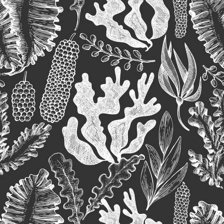 Seaweed seamless pattern. Hand drawn vector seaweeds illustration on chalk board. Engraved style sea food banner. Vintage sea plants background