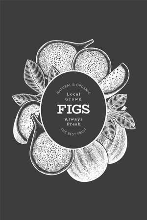 Hand drawn fig fruits design template. Organic fresh food vector illustration on chalk board. Retro fig fruit banner.