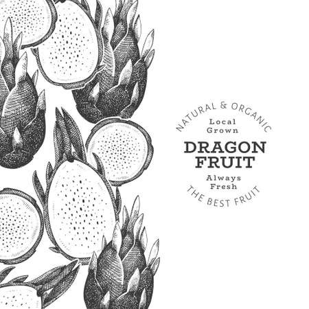 Hand drawn dragon fruit design template. Organic fresh food vector illustration. Retro pitaya fruit banner. 矢量图像
