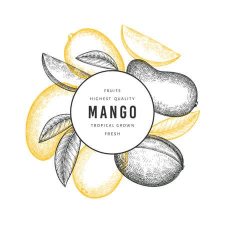 Hand drawn sketch style mango banner. Organic fresh fruit vector illustration. Retro mango fruit design template