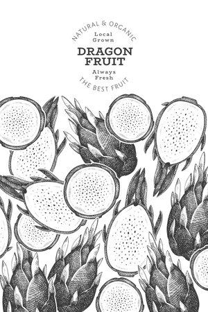Hand drawn dragon fruit design template. Organic fresh food vector illustration. Retro pitaya fruit banner. 矢量图像