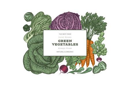 Hand drawn vintage color vegetables design. Organic fresh food vector banner template. Retro vegetable background. Traditional botanical illustrations.