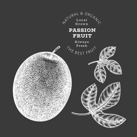 Hand drawn sketch style passion fruit. Organic fresh food vector illustration isolated on chalk board. Retro exotic fruit illustration. Engraved style botanical picture. 免版税图像 - 166714651