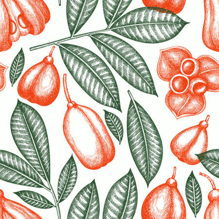 Hand drawn sketch style ackee seamless pattern. Organic fresh food vector illustration. Retro exotic fruit background.