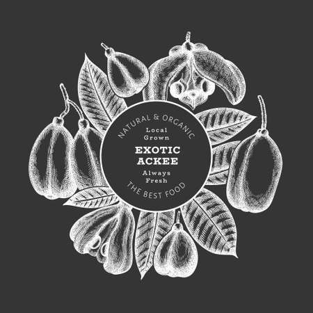 Hand drawn sketch style ackee banner. Organic fresh food vector illustration on chalk board. Retro exotic fruit design template. Engraved style botanical background.