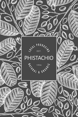Hand drawn phistachio branch and kernels design template. Organic food vector illustration on chalk board. Retro nut banner.