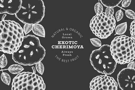 Hand drawn sketch style cherimoya banner. Organic fresh fruit vector illustration on chalk board. Botanical design template.