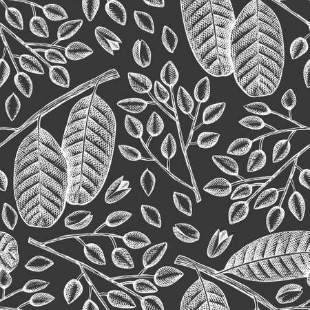 Hand drawn phistachio branch and kernels seamless pattern. Organic food vector illustration on chalk board. Retro nut illustration. Engraved style botanical background.