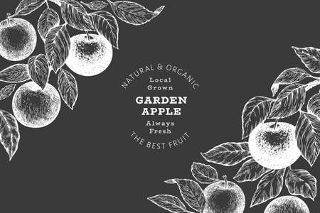Apple branch design template. Hand drawn vector garden fruit illustration on chalk board. Engraved style fruit retro botanical banner. 矢量图像