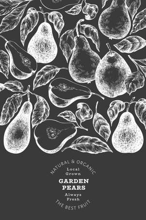 Pear design template. Hand drawn vector garden fruit illustration on chalk board. Retro botanical banner.
