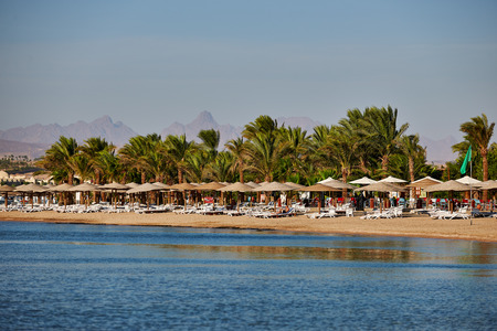 sunshades: Beach with palm trees and sunshades in the Red Sea Stock Photo
