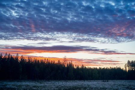 finnish: Beautiful Finnish landscape at dawn in spring