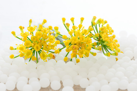 homeopathic: Whitye homeopathic granules and yellow flowers on white backgrouns Stock Photo