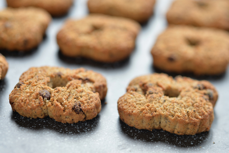 galletas integrales: Very good Italian homemade biscuits, lying on a tray
