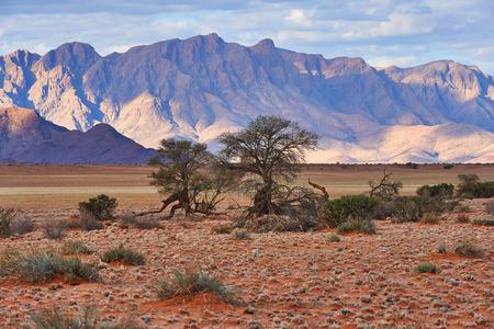 Hermoso paisaje de Namibia fotografiado con las primeras luces del día