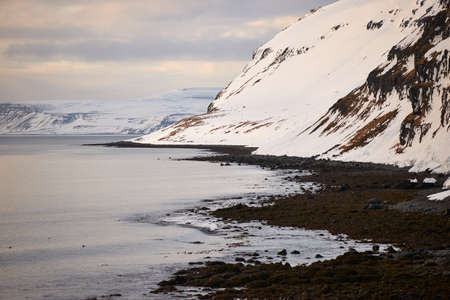 Landscape along the Icelandic coast in winter during a cloudy day.