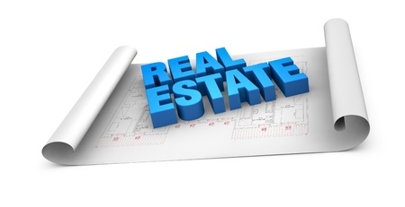 the words: real estate placed over a plan project (3d render) Stock Photo - 11505633
