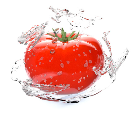 one red tomato with water splashes, concept of freshness (3d render) photo