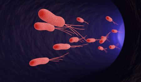 escherichia: flowing of escherichia bacteria under the microscope (3d render)