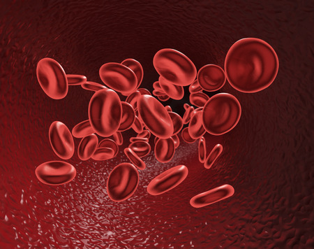 vein: flow of red blood cells inside a vein (3d render)