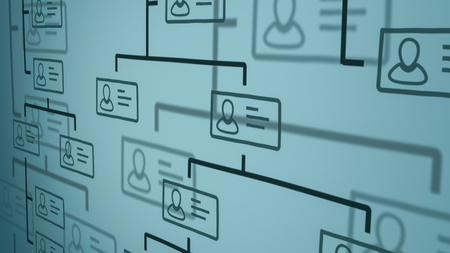 close up view of a company organization chart on a whiteboard. hand drawn style