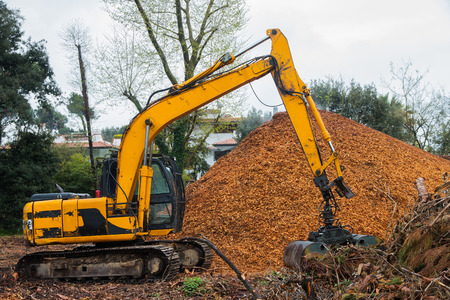 cingulate: Cingulate Excavator with hydraulic Clamshell Grab Bucket loader  used to move wood chips Stock Photo