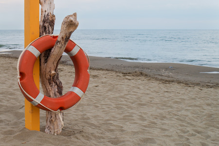 hanging on: orange lifebuoy hanging on a dry dead trunk near a pink pole on a sandy beach sea and sky in background