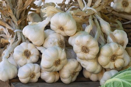 detail of a  garlic braid exposed for sale in a country market. Black background