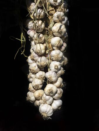 big garlic braid exposed to sunlight in a country market. Black background Archivio Fotografico