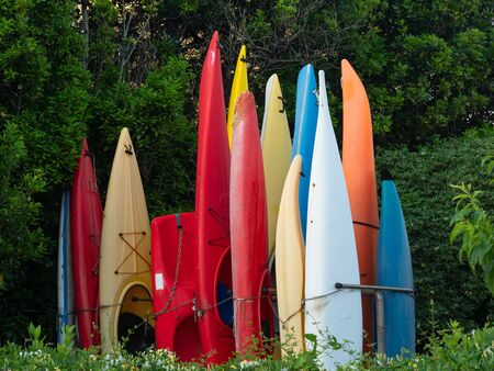 colorful group of plastic canoes and kayaks stored in vertical, surrounded by trees and bushes