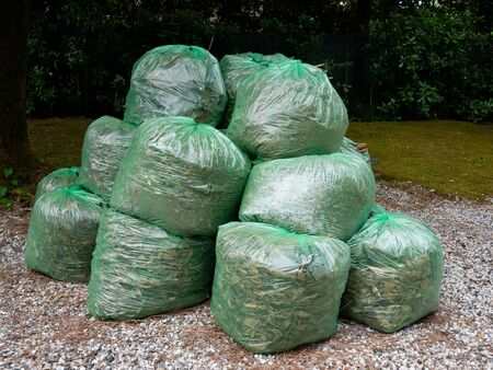 Group of Green clear plastic bags filled with organic  waste from garden and yard Archivio Fotografico
