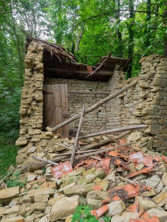 debris and rubble of an old stone house collapsed in the woods; vertical composition