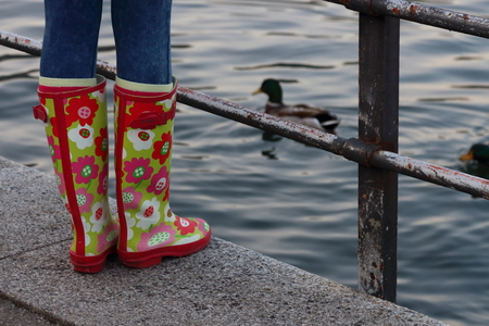 colourful rubber boot on the Como lake shore