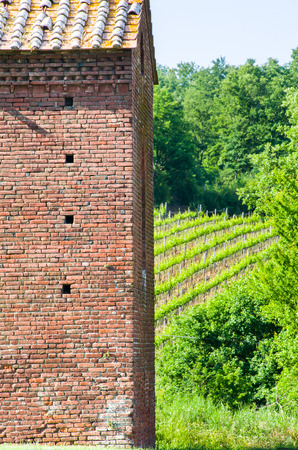 contryside: red bricks rural building with wineyards on the background