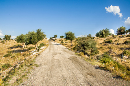 bumpy road: bumpy road in Puglia countryside -  Gargano Stock Photo