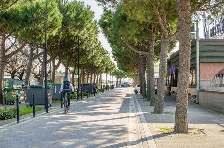 treelined: Comacchio, March 12 2016 - a cyclist pedals on the tree-lined waterfront promenade of Lungomare Italian of Lido delle Nazioni