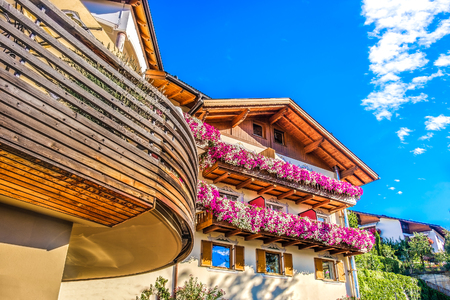 modern mountain chalet purple flowers colorful design south tyrol accomodation Editorial