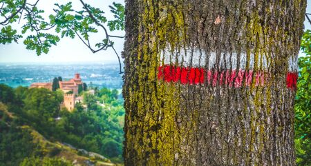 red signs on marked tree hiking trail in italy - Monteveglio - Bologna - Italy Imagens