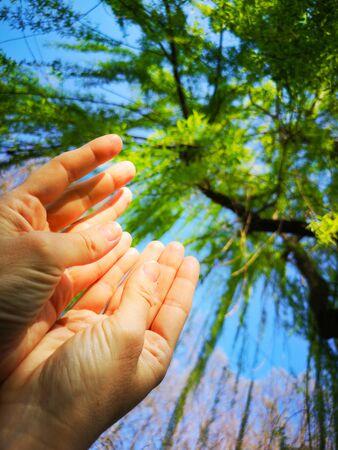 believer hands background vertical