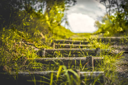 steps in the nature country trail landscapes background